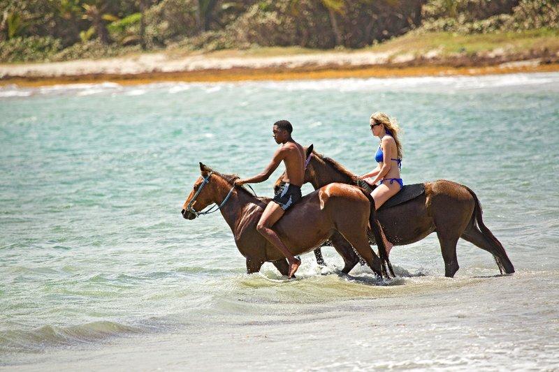large_Horse_Ride..otton_Bay_4.jpg
