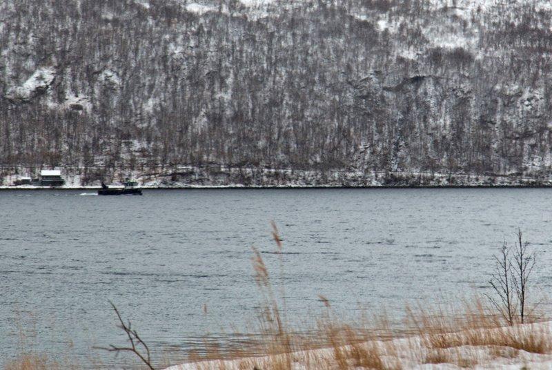 large_Kaldfjorden_5.jpg