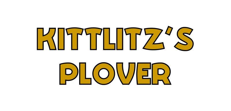 large_Kittlitz_s_Plover.jpg