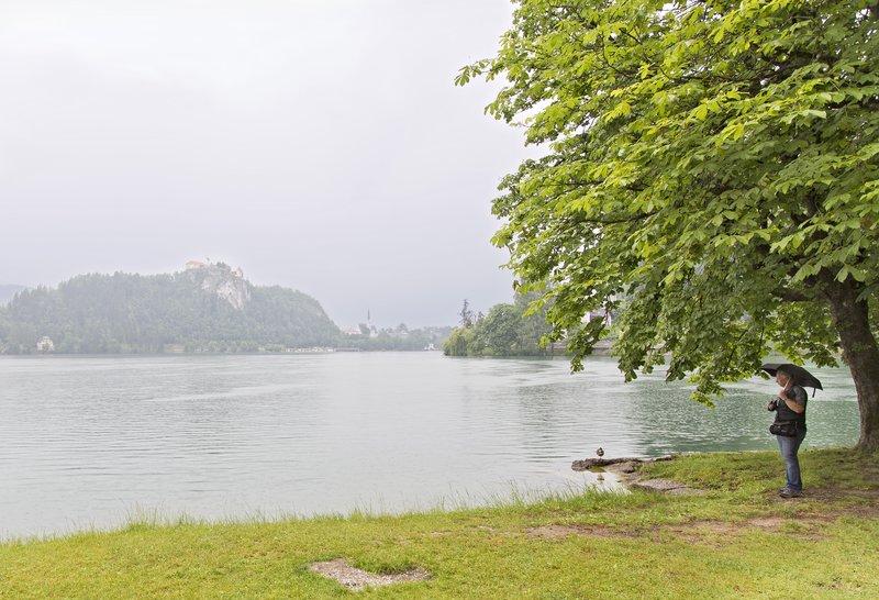 large_Lake_Bled_5.jpg