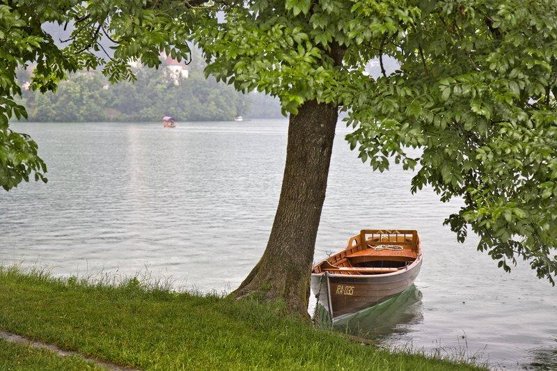 large_Lake_Bled_8.jpg