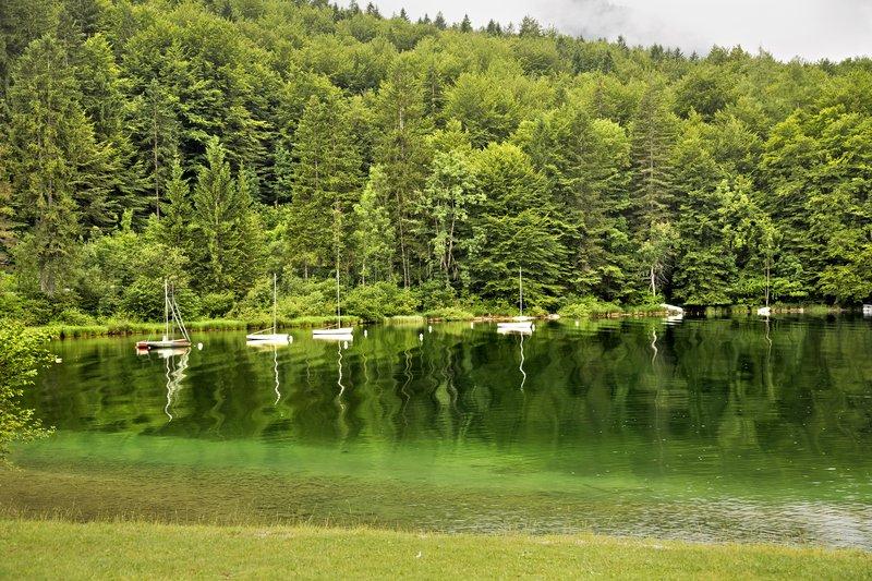 large_Lake_Bohinj_4.jpg