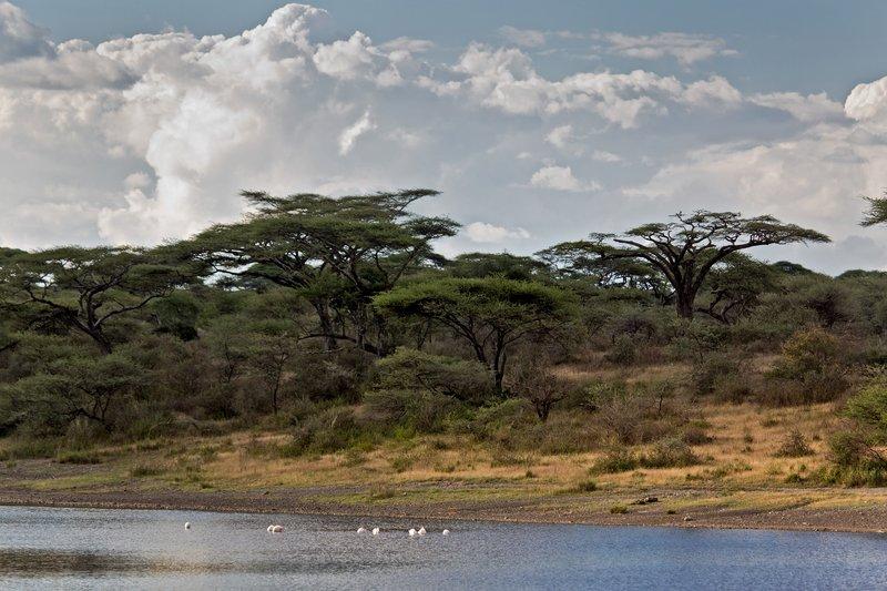 large_Lake_Masek_8-1.jpg