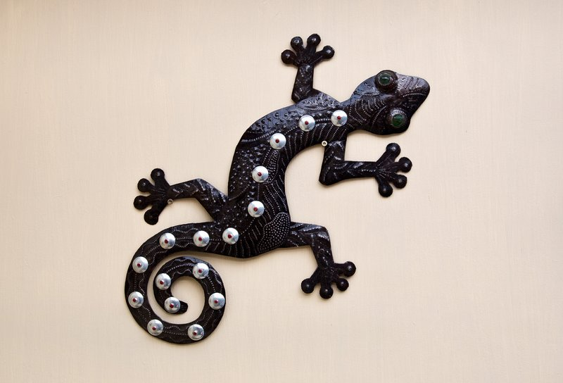 large_Lizard_fro..etes__Haiti.jpg