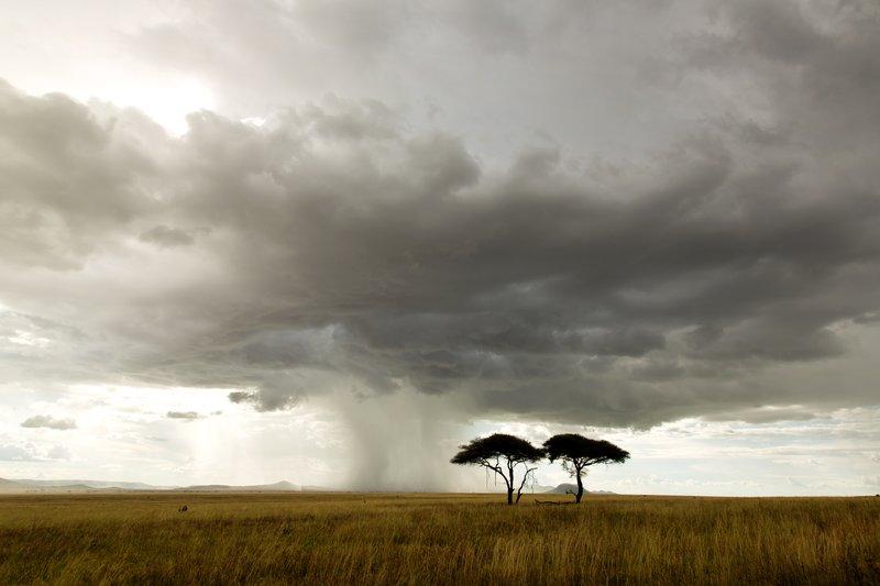 large_Localised_Rain_1.jpg