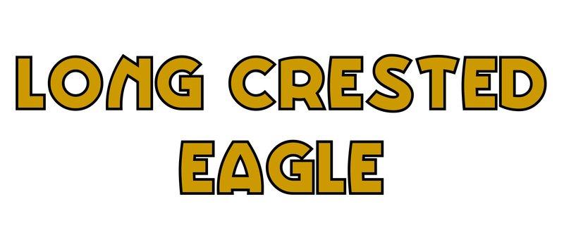 large_Long_Crested_Eagle.jpg