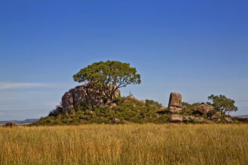 large_Maasai_Kopjes_42.jpg