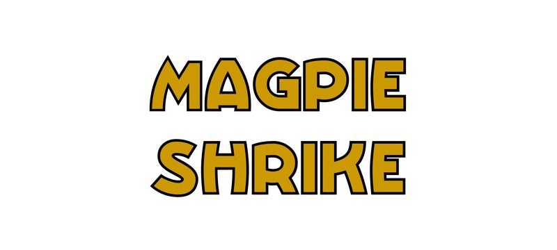 large_Magpie_Shrike.jpg