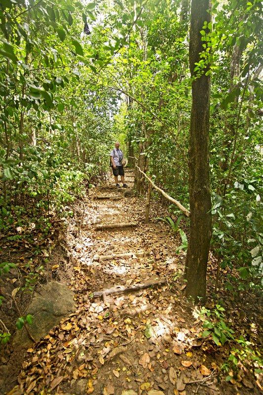 large_Mamiku_Gardens_78.jpg