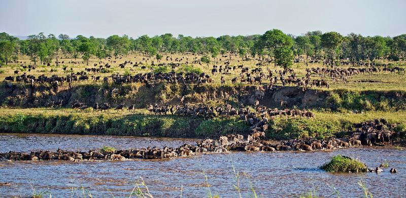 large_Mara_River..sing___2__1.jpg