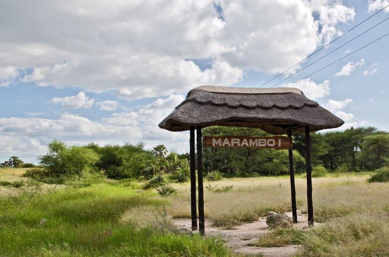 large_Maramboi_1.jpg