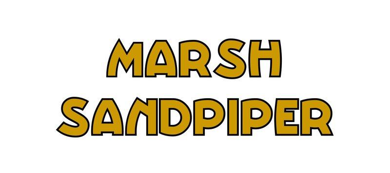 large_Marsh_Sandpiper.jpg