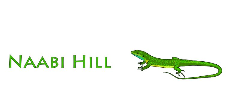 large_Naabi_Hill.jpg