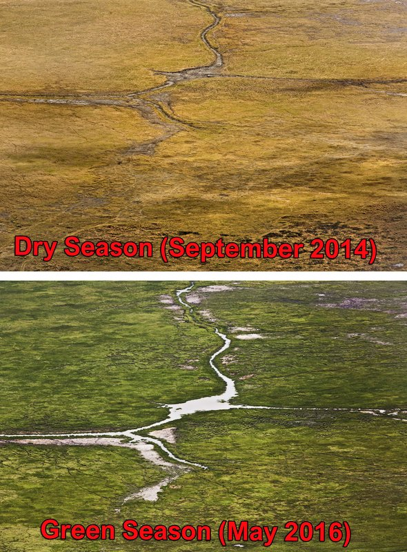 large_Ngorongoro.._Comparison.jpg