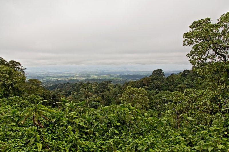 large_Ngorongoro.._the_Rim_15.jpg