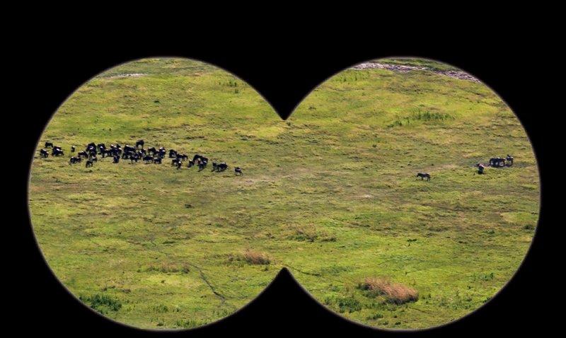 large_Ngorongoro..ater_Rim_15.jpg