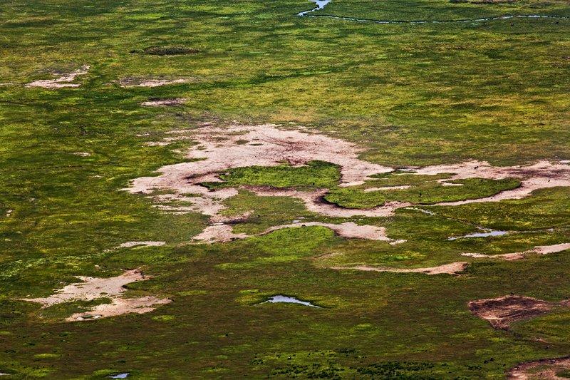 large_Ngorongoro..ater_Rim_17.jpg