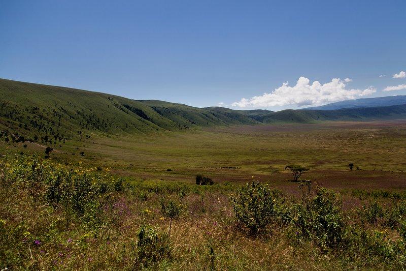 large_Ngorongoro..cent_Road_3.jpg