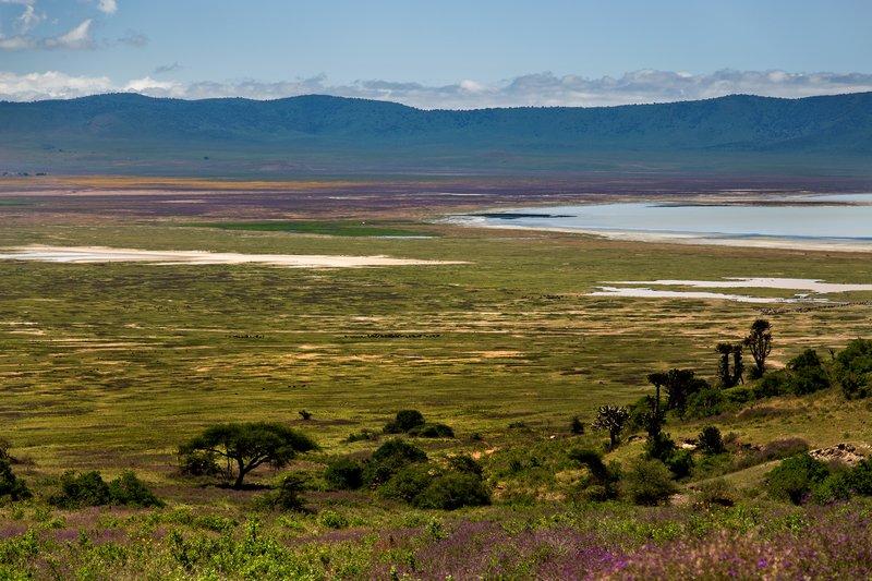 large_Ngorongoro..cent_Road_5.jpg