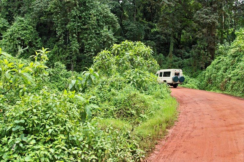 large_Ngorongoro..o_the_Rim_6.jpg
