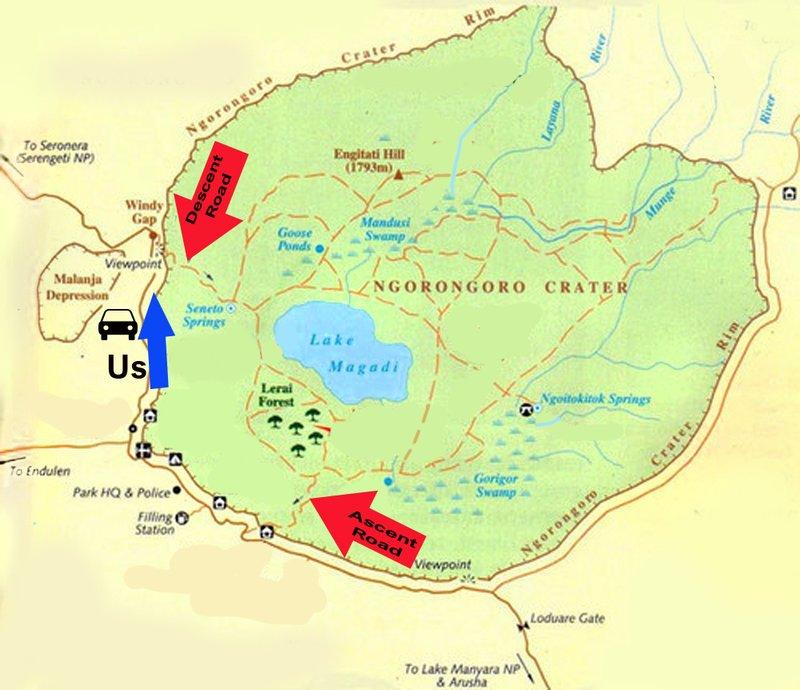 large_Ngorongoro..th_arrows_1.jpg