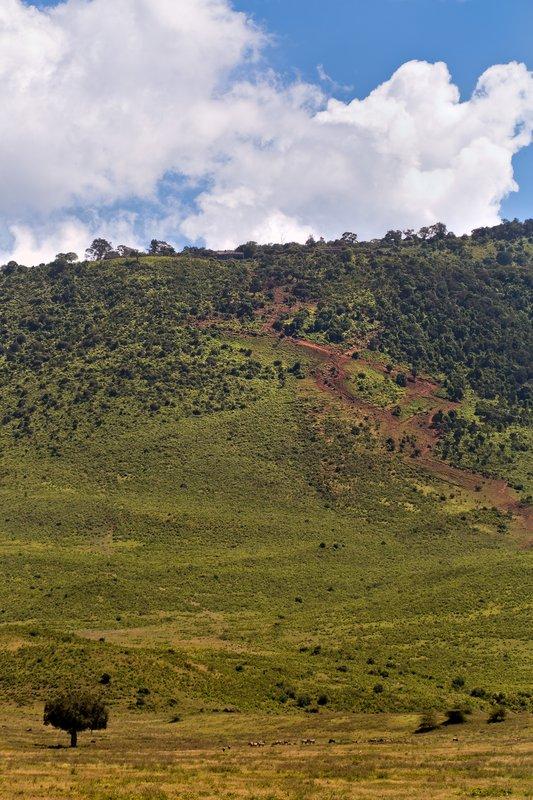 large_Ngorongoro_Serena_3.jpg