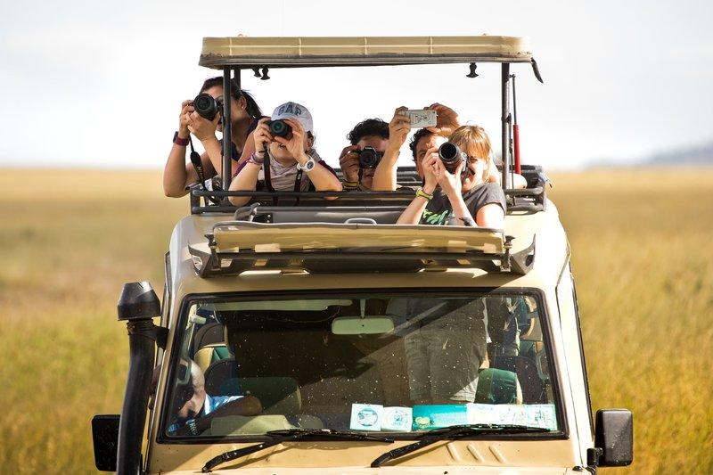 large_Other_Safari_Vehicles_2.jpg