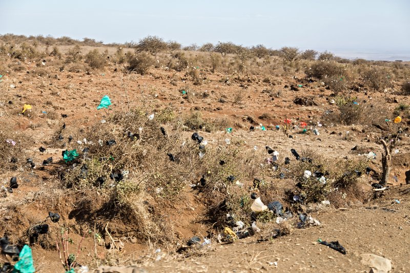 large_Plastic_Bag_Graveyard_1.jpg