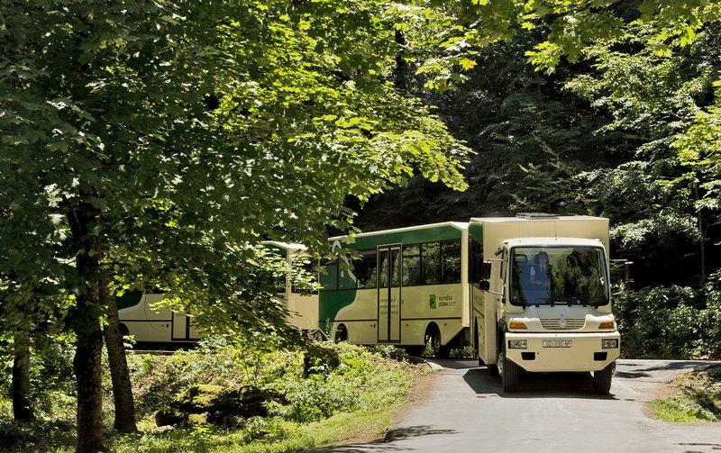 large_Plitvice_L.._Park_Bus_1.jpg
