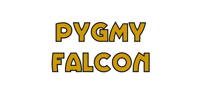 large_Pygmy_Falcon.jpg
