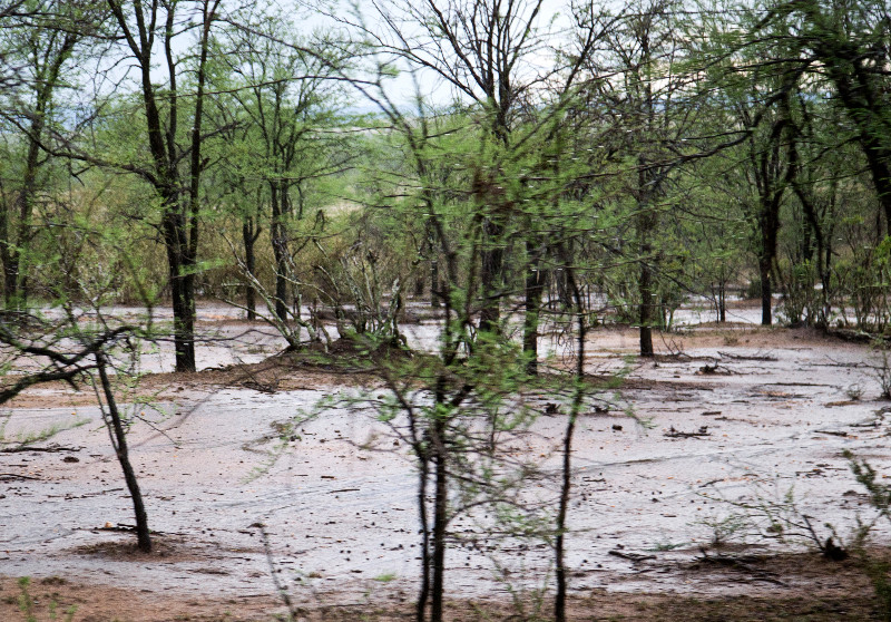 large_Rain_and_Flood_2.jpg