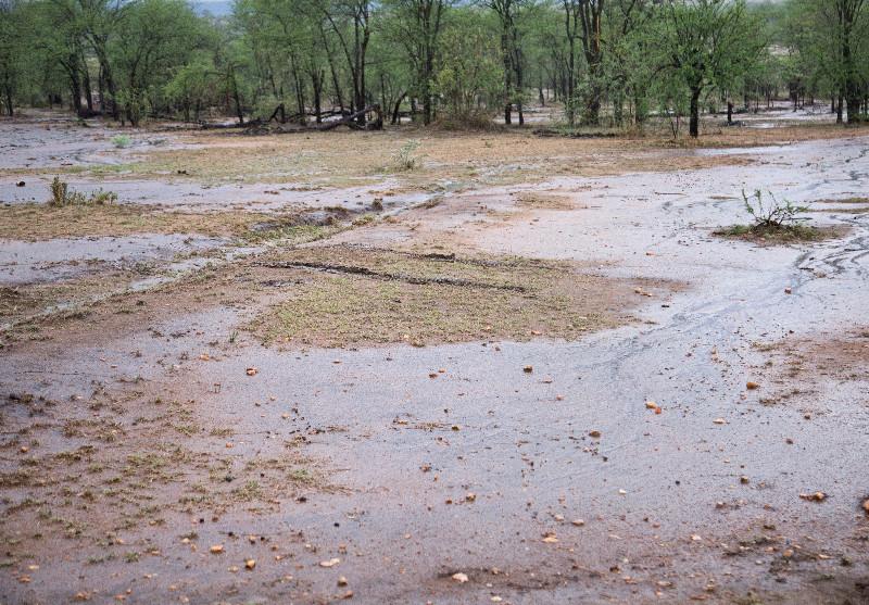 large_Rain_and_Flood_4.jpg