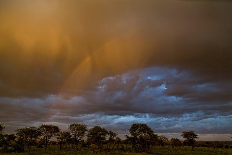 large_Rainbow_3.jpg
