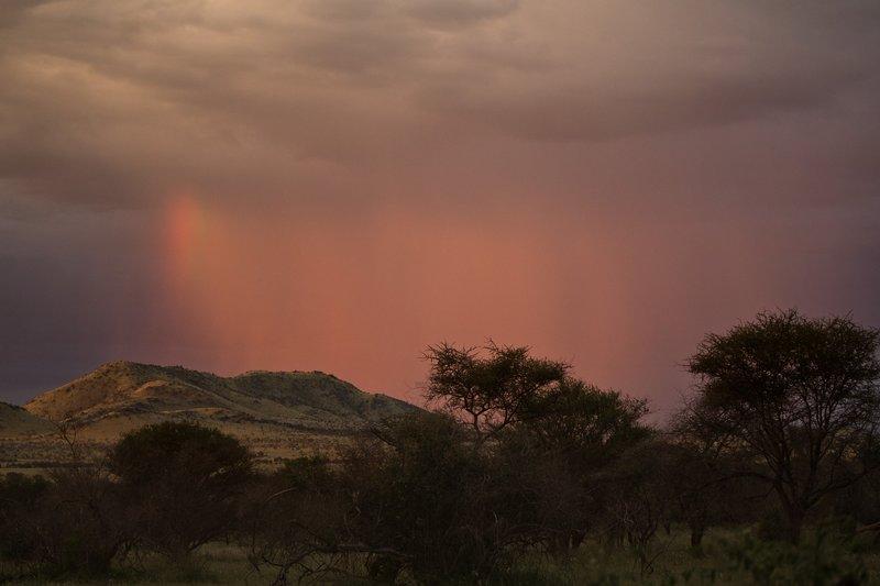 large_Rainbow_6.jpg
