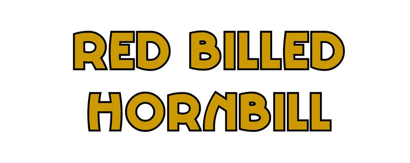 large_Red_Billed_Hornbill.jpg