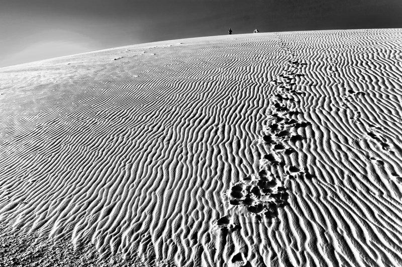 large_Ruso_Sand_Dune_12_B_W.jpg