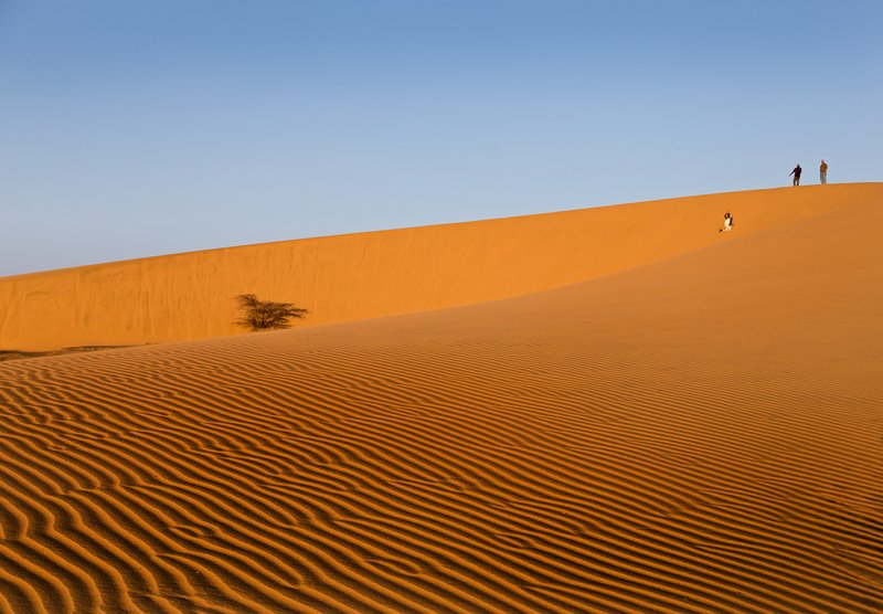 large_Ruso_Sand_Dune_15.jpg