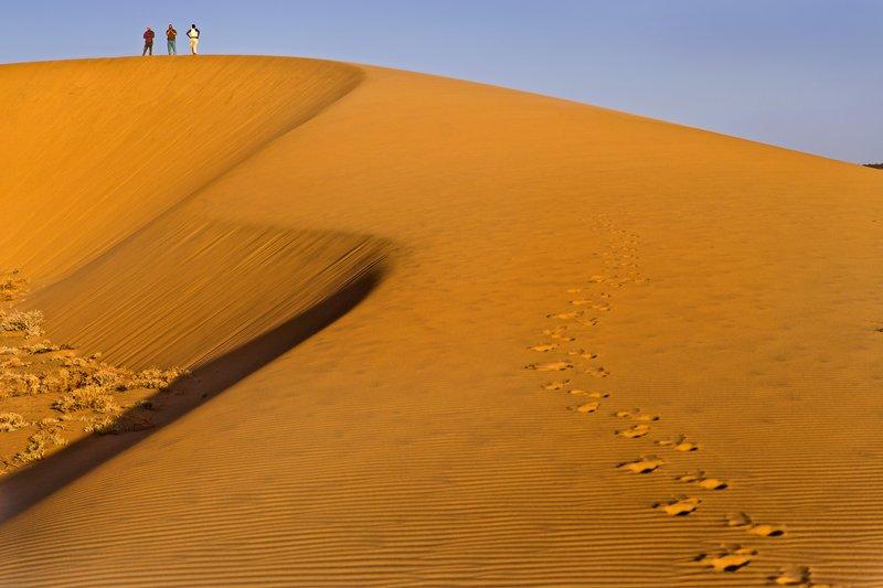 large_Ruso_Sand_Dune_22.jpg