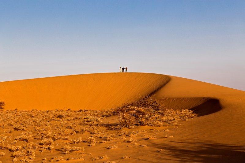 large_Ruso_Sand_Dune_26.jpg