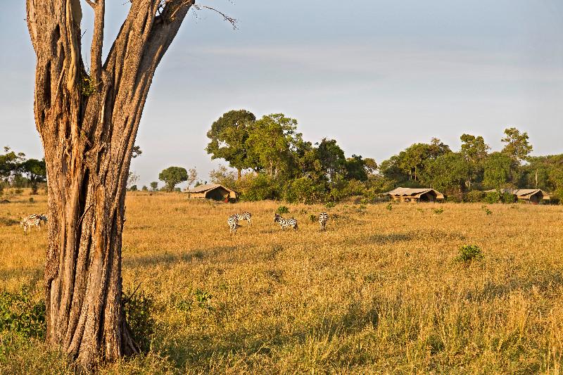 large_Serengeti_..bile_Camp_5.jpg