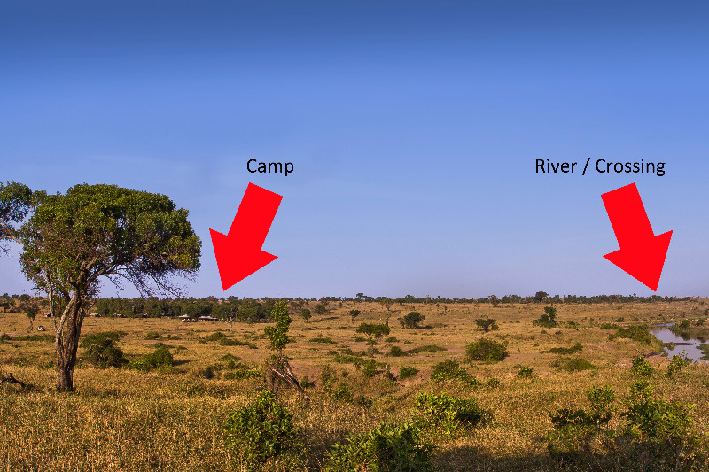 large_Serengeti_..g_locations.jpg