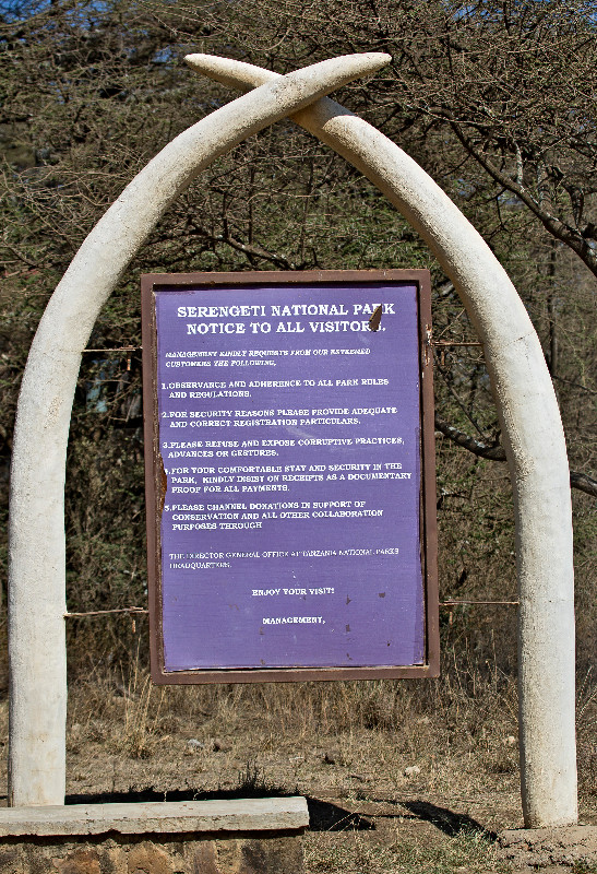 large_Serengeti_National_Park_1.jpg