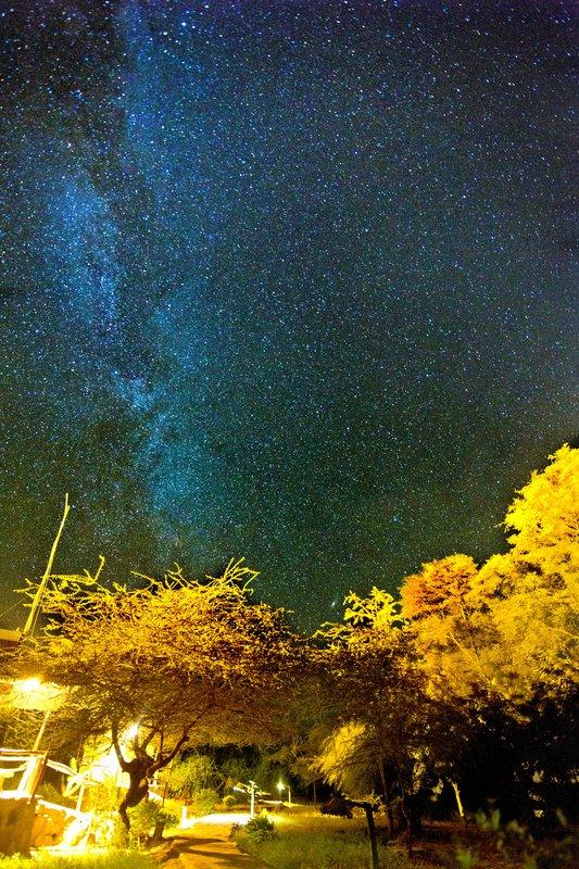 large_Starry_Sky_1A.jpg
