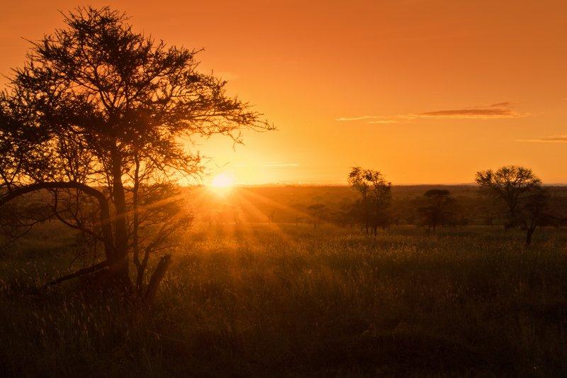 large_Sunrise_16th_May___1.jpg