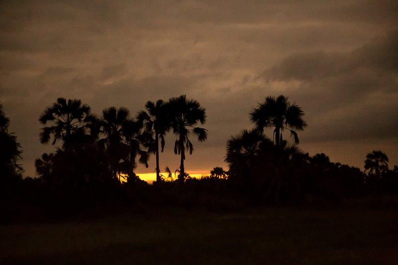 large_Sunrise_5-2.jpg