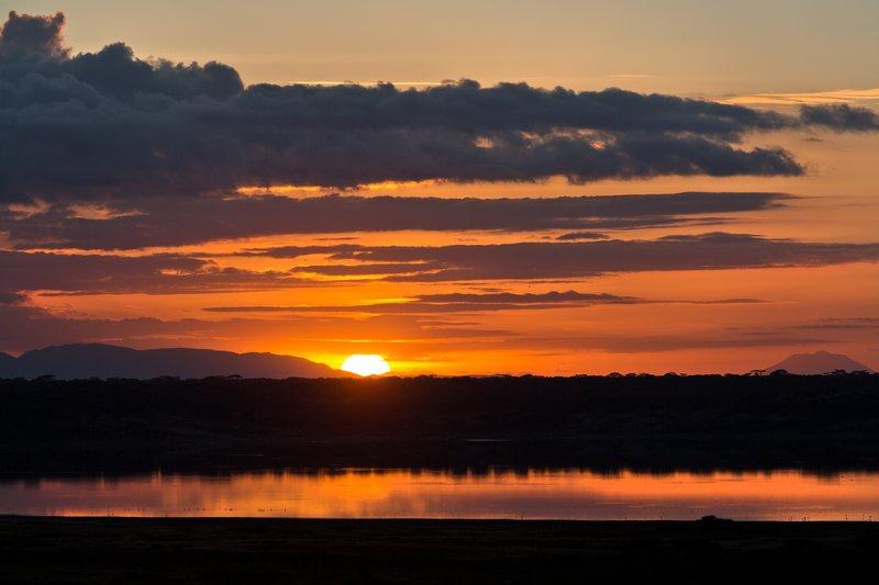 large_Sunrise_ov.._Ndutu_8-11.jpg