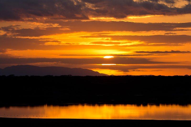 large_Sunrise_ov.._Ndutu_8-12.jpg