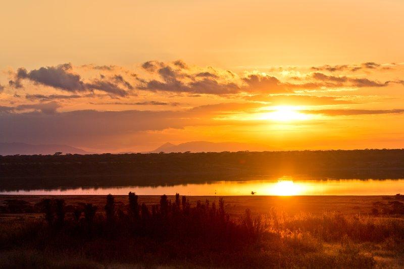 large_Sunrise_ov.._Ndutu_8-14.jpg