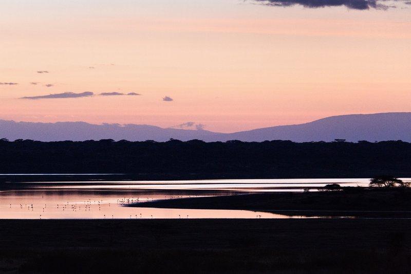 large_Sunrise_ov..e_Ndutu_8-1.jpg