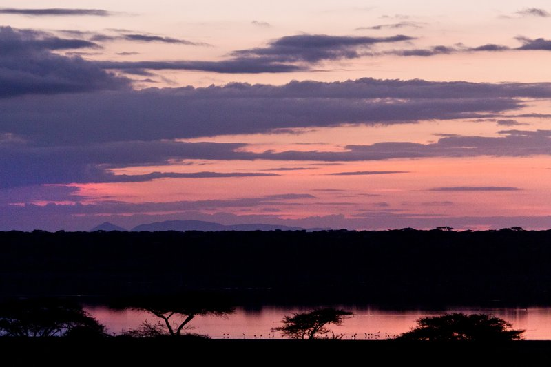 large_Sunrise_ov..e_Ndutu_8-4.jpg